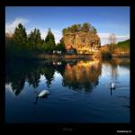 Foto L.Renner Jaro s labutěmi