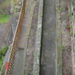 2) Terasa spodní -můstek, plot a vinice po celkové opravě