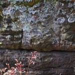 Údajné keltské znaky (pod hranou horního plató ve stěně rozsedliny středověkého vstupu)