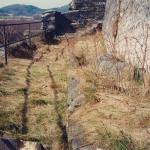 5) Terasa spodní, západní část před vyčištěním.
