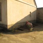 Výsadba růží u stěny domku (1)