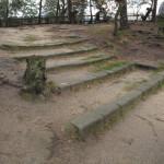 Opravené schody překryly vymletý terén s vyčnívajícími kořeny. Současně brání dalšímu vymílání povrchu dešťovou vodou.