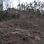 Úprava terénu kolem studny pro altán. Stráň vymícena pro transport kmenů směrem nahoru.