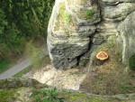 Místo po odstranění dubu a bloku