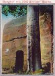 Totéž nádvoří asi před 120 lety s popsaným bukem (kolorovaná fotografie)